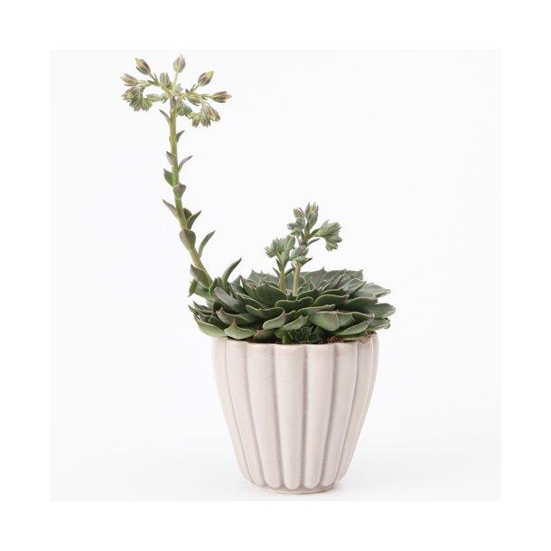 Hanne Bertelsen - Keramik urtepotteskjuler Rille, mini, lys syren